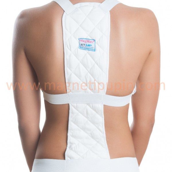 Magnetic System for the Upper Back and Lumbar Region