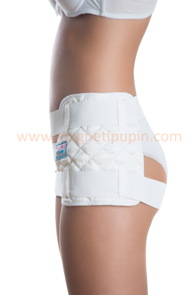 Magnetic System for the Hip